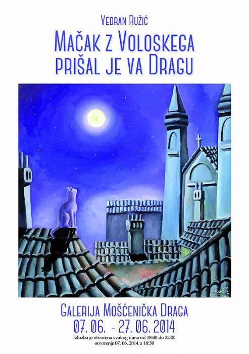 Vedran Ružić<br>